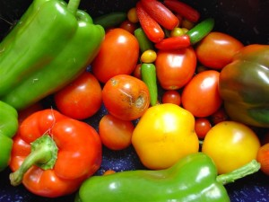 Eating Healthy Vegetables Is Great Treatment for Osteoporosis